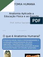 Anatomia Humana - Aula Introdutoria