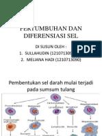Pertumbuhan Dan Diferensiasi Sel