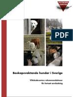 Brug af hyrdehunde i Sverige