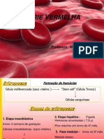 Aula Hematologia - Eritropoese e Hem-cias 01-04