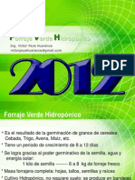 FVH Paye 2012.ppt