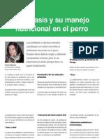 AV 37 Urolitiasis Manejo Nutricional Perro