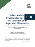 Vulnerando Las Fragilidades Del Pilar de Consumo_MesaGCR