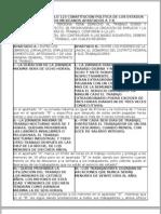 50841330 Analisis Del Articulo 123 Ayb