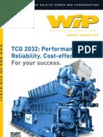 WIP January February 2013