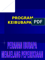 Program Keibubapaan