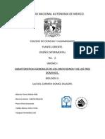5reinos3dominios-120420185545-phpapp01