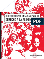 Directrices voluntarias