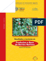 Productos a Base de Berries Nativos