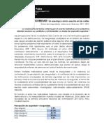 INSEGURIDAD CIUDADANA EN ABANCAY 2012