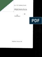 Csetneky László - Börtönpszichológia