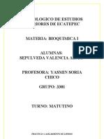Practica _2 Aislamiento de Lipidos[1]