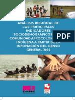 Afro Indicadores Sociodemograficos Censo2005