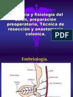 Anatoma y Fisiologa Del Colon Preparacin Preoperatoria 1224129224547424 8