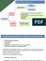 Presentación1 amb