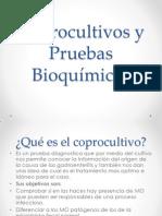 Coprocultivos y Pruebas Bioquímicas