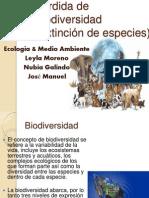 exposicion ecologiaa