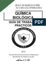 Guia de TP 2013.pdf
