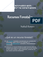 Recursos Naturales Renovables y No Renovables (2)