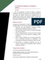 Mba Gestao de Negocio e Inteligencia Competitiva Sabado 2013 1