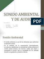 Sonido ambiental y audio