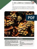 42220222-Hypholoma-fasciculare.pdf