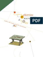 Campos Electricos y Magneticos de 50 Hz UNESA