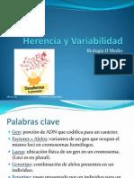 2B - Herencia y Variabilidad