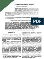 efeitos alelopáticos de resíduos vegetais Fenando Sousa de Almeida