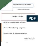 PRACTICA_TSO.docx