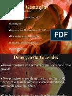 Gestação 2009