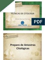 Silene Tecnicas Citologia