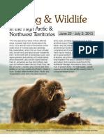 2013 Birding and Wildlife High Arctic & NWT