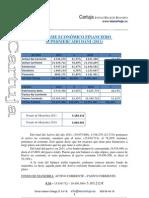 Informe económico financiero Dani