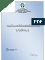 Manual de conceitos fundamentais utilizados no estudo de Química