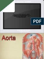 Aorta.ppt