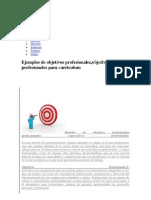 Objetivos Profesionales Desarrollo Personal Planificacion