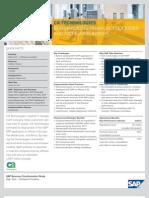 SAP implementation Case Study