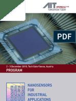 2010 Nanosens Web