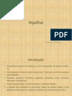 Hipófise