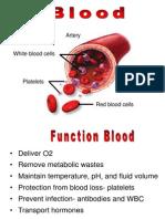 Hematologi Introduction Uniba 9-1-13