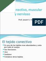 Tejido Conectivo, Muscular y Nervioso
