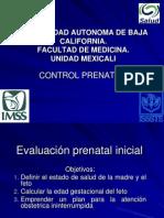 41477384 3 Control Prenatal