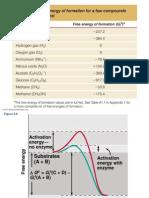 6. Metabolism.220.2012
