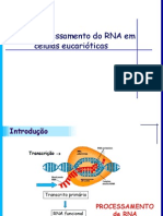 Processamento_do_RNA