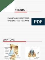 Referat rinitis