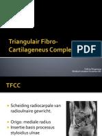 Triangular Fibrocartilage Complex (Dutch)