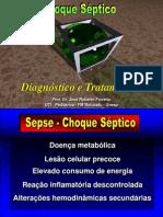 sepse_2003_6oano