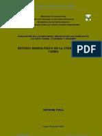 Informe Final Casma Vol I Casma