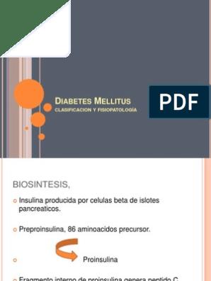 diabetes mellitus tipo 1 fisiopatología plantilla ppt